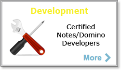Lotus Notes Development